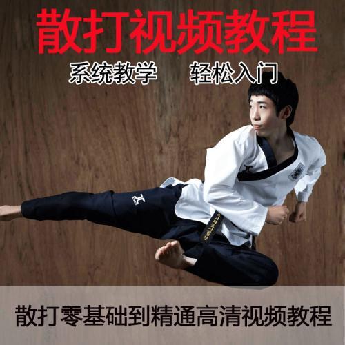 散打高清视频教程,专业武术零基础到高级自学搏击防身培训课