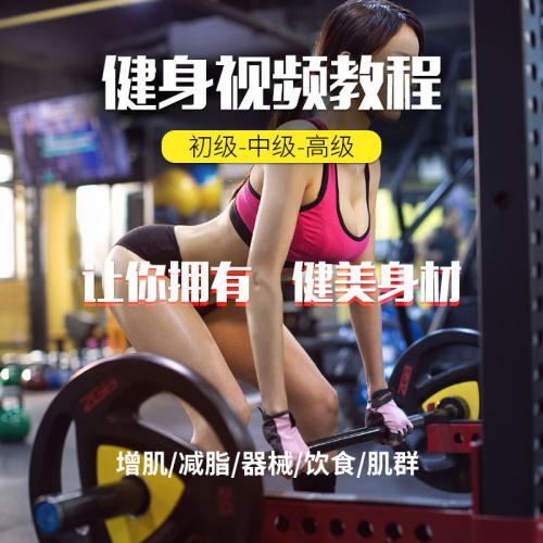 健身视频减肥教程全套教学零基础入门资料知识运动教练指导计划