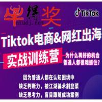 0基础小白学习抖音国际版TikTok海外自媒体短视频新手实战训练课程