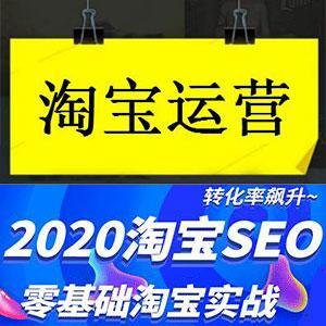 零基础小白学习淘宝店铺SEO运营实战视频课程